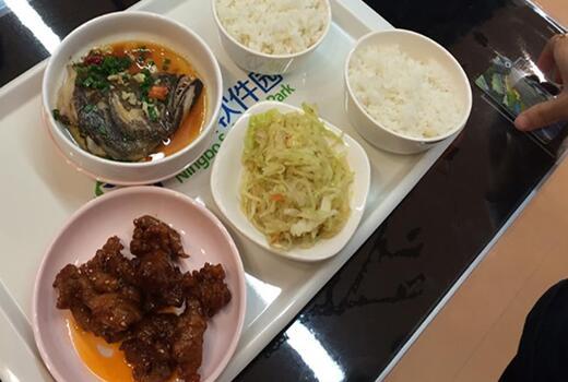 食堂自由餐饭菜图片